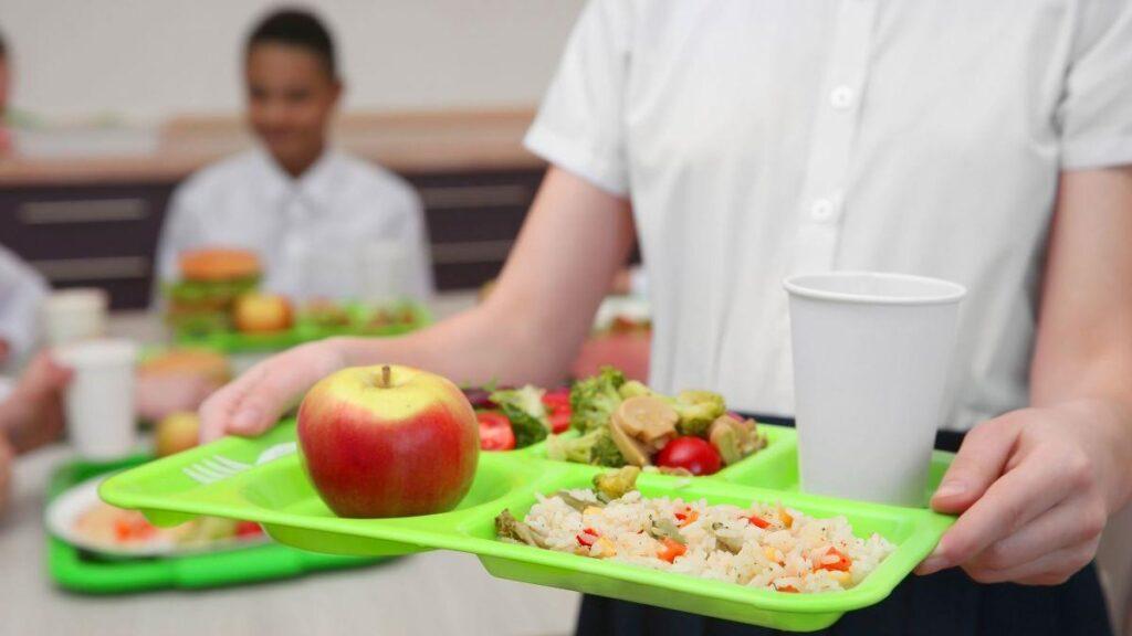 zagotavljanje-toplega-obroka-za-ucence-osnovnih-sol-in-dijake,-ki-se-izobrazujejo-na-daljavo